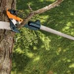 Best Saw Tool for Cutting High Tree Branches
